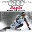 Audi World Cup, Hry na mobil